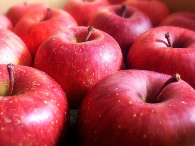リンゴは縦長と横長で味が違う!?リンゴの失敗しない選び方