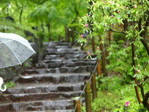 最新傘7選!水滴ゼロ傘に絶対壊れない傘、超小型傘など【所さんお届けモノです】