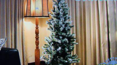 ニトリのクリスマスツリー!ヌードツリー