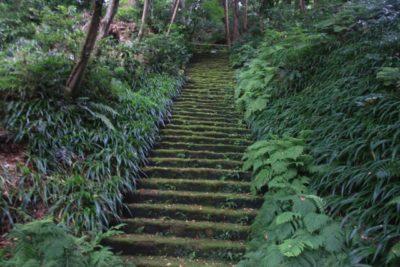 鎌倉の妙法寺「コケの階段」